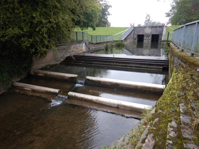 LAND & WATER WINS PROJECT OF WORKS WITH THE ENVIRONMENT AGENCY IN THE SOUTH WES