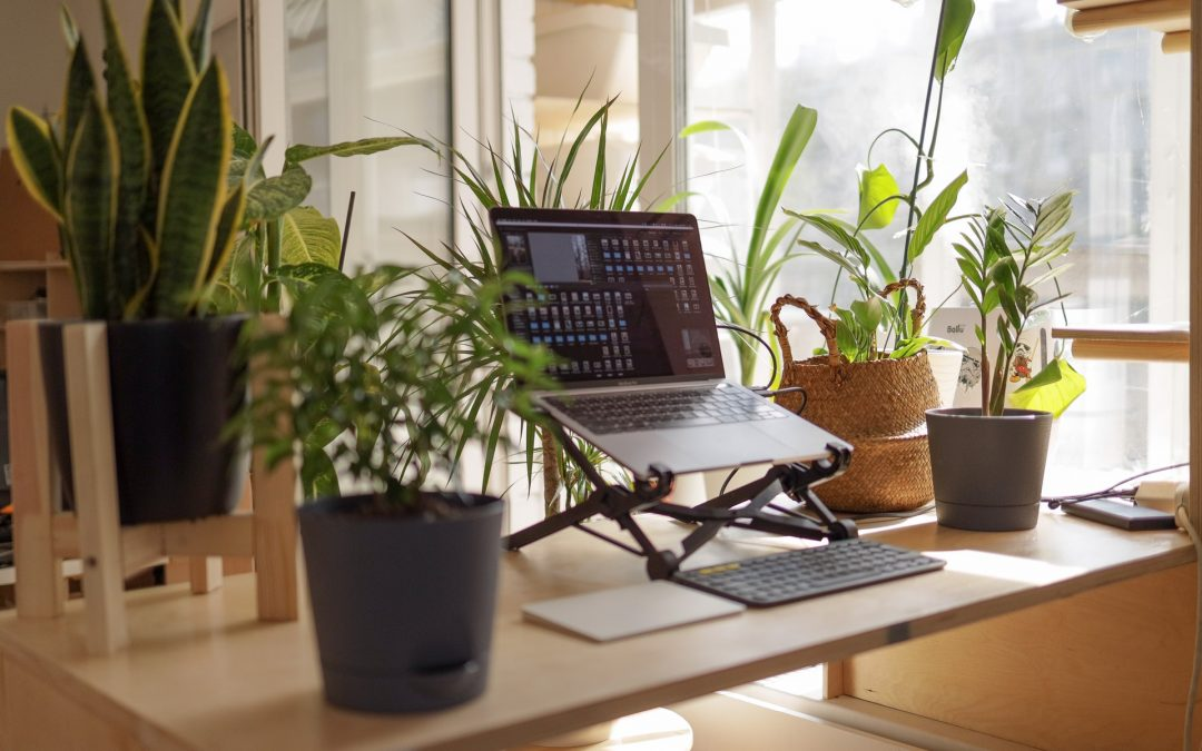 Everything you need to know about working from home in 2021
